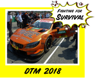 Fighting for Survival DTM 2018